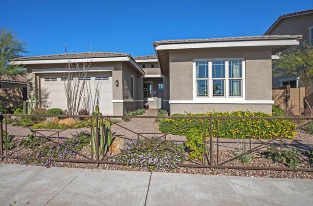 8998 W Diana Avenue, Peoria, AZ 85345 (MLS #5636803) :: Santizo Realty Group