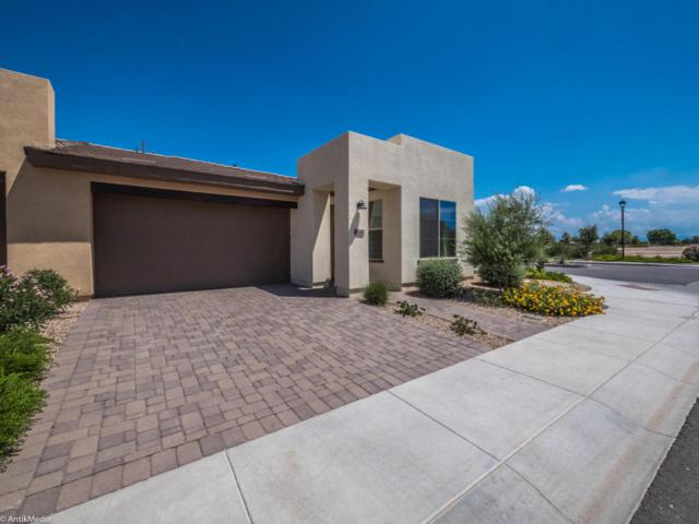 36240 N Desert Tea Drive, San Tan Valley, AZ 85140 (MLS #5636849) :: The Pete Dijkstra Team