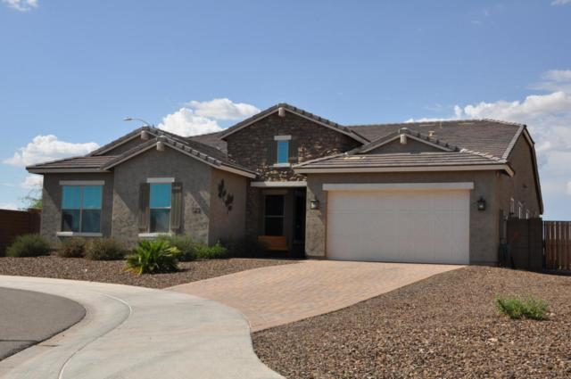 9438 W Donald Drive, Peoria, AZ 85383 (MLS #5636858) :: The Everest Team at My Home Group