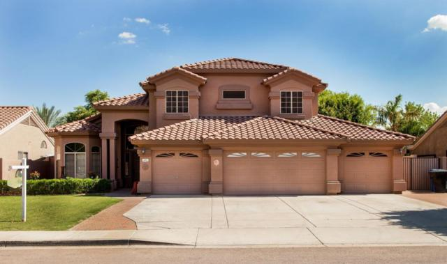 115 W Sheffield Avenue, Gilbert, AZ 85233 (MLS #5636906) :: The Everest Team at My Home Group
