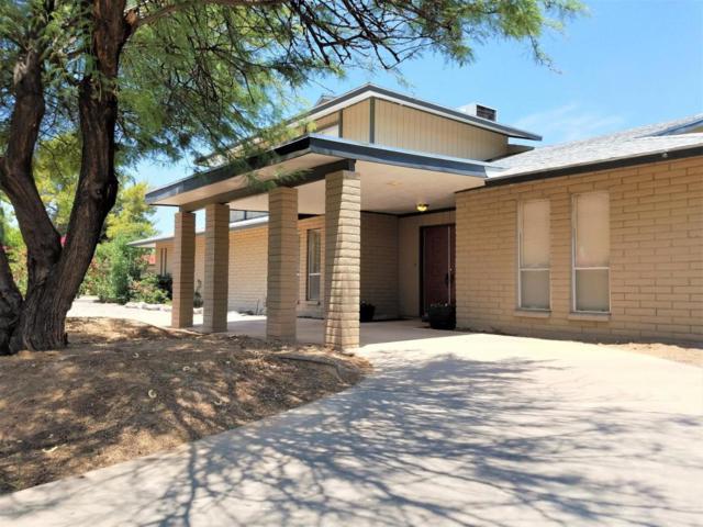 2408 E Hale Street, Mesa, AZ 85212 (MLS #5636912) :: Santizo Realty Group