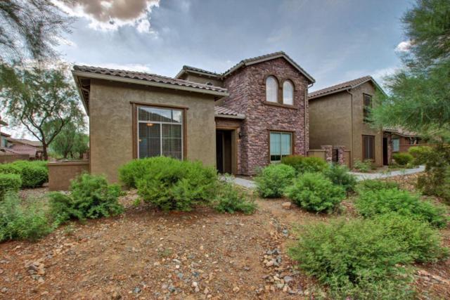 2045 W Madre Del Oro Drive, Phoenix, AZ 85085 (MLS #5636938) :: The Laughton Team