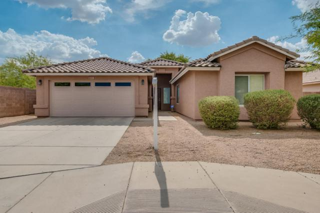 6032 S 20TH Avenue, Phoenix, AZ 85041 (MLS #5636970) :: Santizo Realty Group