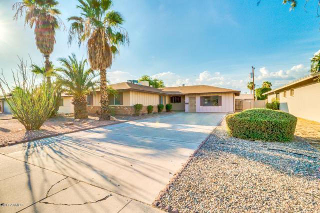 1262 E Hermosa Drive, Tempe, AZ 85282 (MLS #5637033) :: The Pete Dijkstra Team