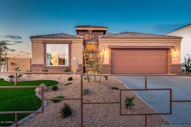 4170 W Goldmine Mountain Drive, Queen Creek, AZ 85142 (MLS #5637044) :: The Everest Team at My Home Group