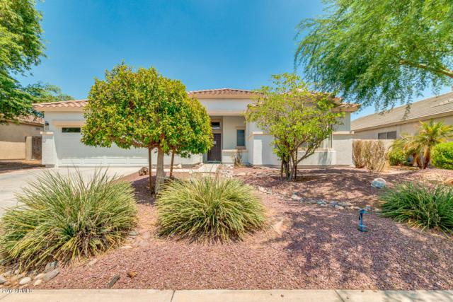 991 N Buckaroo Lane, Gilbert, AZ 85234 (MLS #5637066) :: The Everest Team at My Home Group