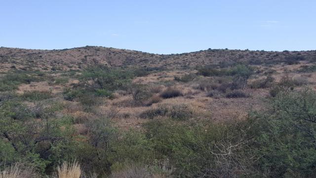 12782 S Rocking Lake Lane, Mayer, AZ 86333 (MLS #5637118) :: The Daniel Montez Real Estate Group
