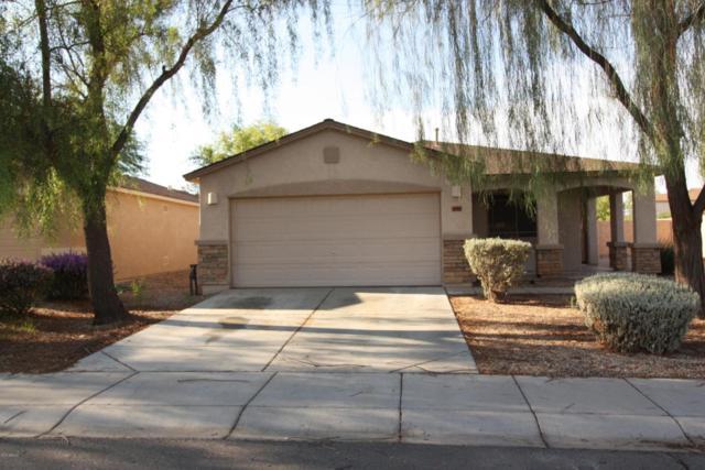 1944 E Saddle Drive, San Tan Valley, AZ 85143 (MLS #5637157) :: Revelation Real Estate