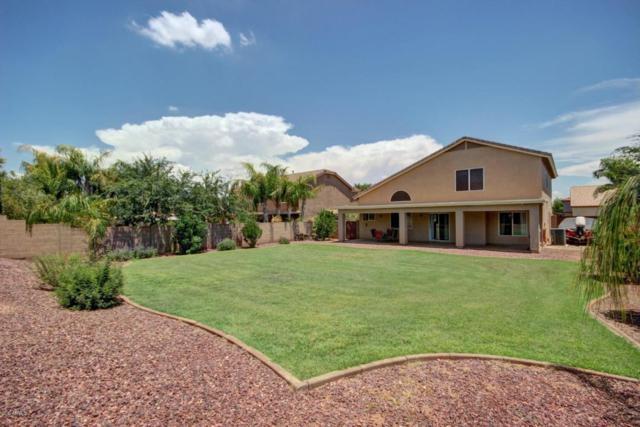31806 N Royal Oak Way, San Tan Valley, AZ 85143 (MLS #5637328) :: Revelation Real Estate
