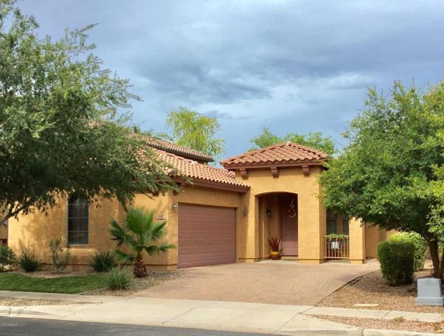 3107 S Joshua Tree Lane, Gilbert, AZ 85295 (MLS #5637386) :: Occasio Realty