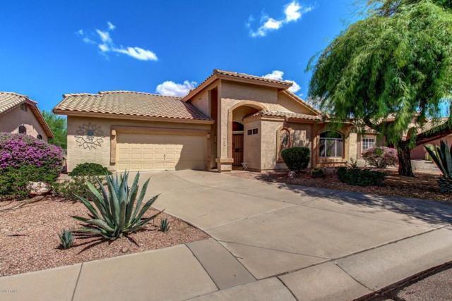 6126 S Cassia Drive, Gold Canyon, AZ 85118 (MLS #5637389) :: The Kenny Klaus Team