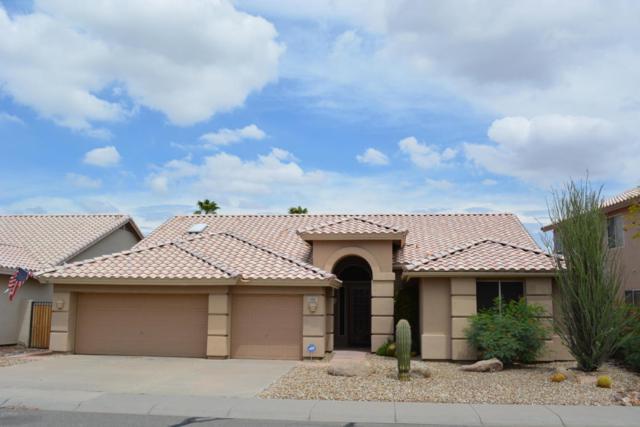 15817 S 31ST Way E, Phoenix, AZ 85048 (MLS #5637459) :: RE/MAX Infinity