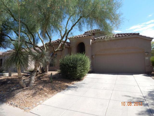 3055 N Red Mountain Road #175, Mesa, AZ 85207 (MLS #5637507) :: The Kenny Klaus Team