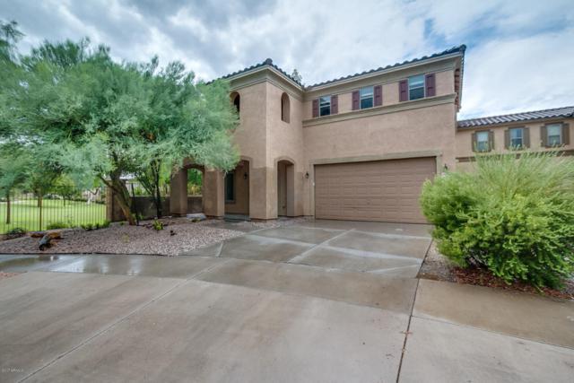 21155 E Duncan Street, Queen Creek, AZ 85142 (MLS #5637633) :: Revelation Real Estate