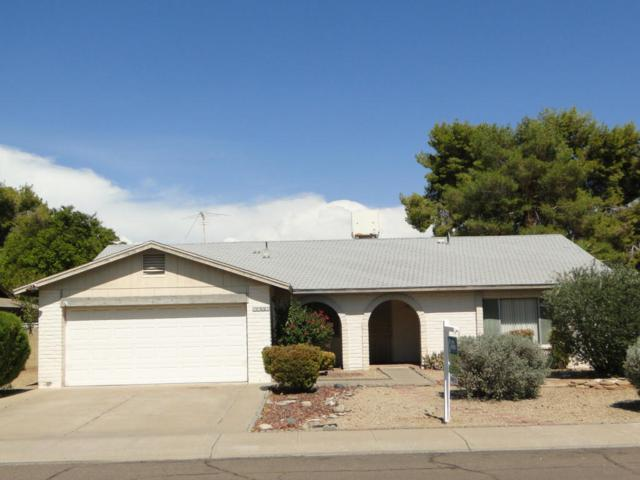 7503 S College Avenue, Tempe, AZ 85283 (MLS #5637696) :: RE/MAX Infinity