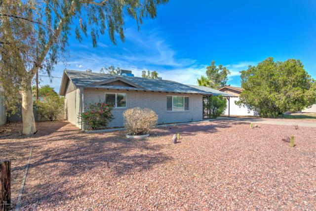 1836 E Palmcroft Drive, Tempe, AZ 85282 (MLS #5637795) :: RE/MAX Infinity