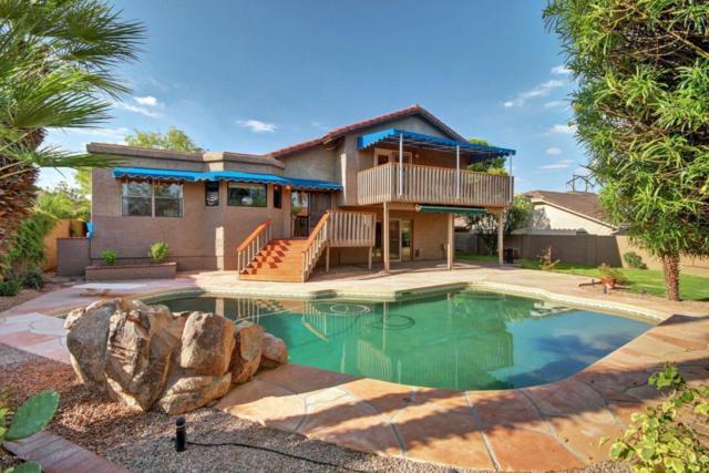 3937 E Nambe Street, Phoenix, AZ 85044 (MLS #5637867) :: RE/MAX Infinity