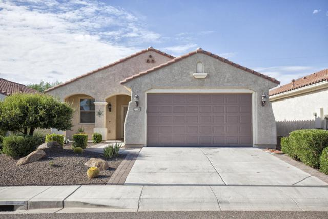 27248 W Ross Avenue, Buckeye, AZ 85396 (MLS #5637879) :: Desert Home Premier