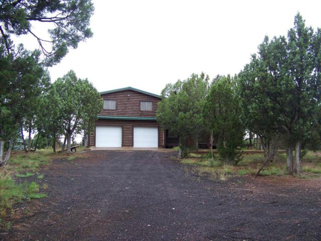 2182 Pulp Mill Road, Clay Springs, AZ 85923 (MLS #5637881) :: Occasio Realty
