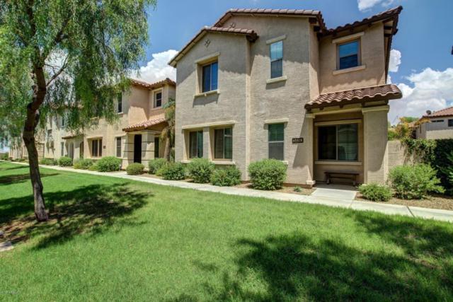 3480 S Bluejay Drive, Gilbert, AZ 85297 (MLS #5637956) :: The Kenny Klaus Team