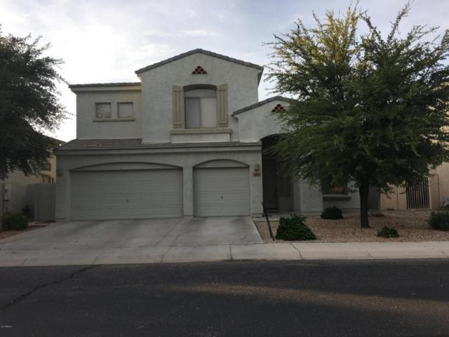 978 E Scorpio Place, Chandler, AZ 85249 (MLS #5638003) :: RE/MAX Infinity