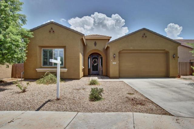 3905 S Kimberlee Way, Chandler, AZ 85286 (MLS #5638020) :: RE/MAX Infinity