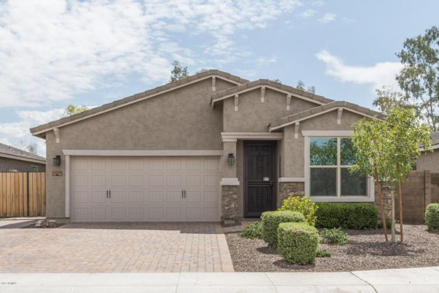 42039 N Modena Road, San Tan Valley, AZ 85140 (MLS #5638187) :: The Kenny Klaus Team