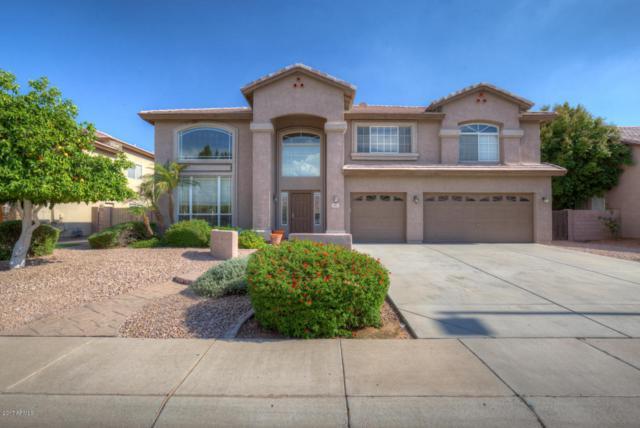3883 E Indigo Bay Drive, Gilbert, AZ 85234 (MLS #5638190) :: RE/MAX Infinity