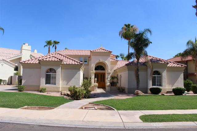 2003 E Catamaran Drive, Gilbert, AZ 85234 (MLS #5638286) :: The Kenny Klaus Team