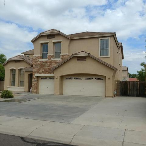 3128 E San Pedro Court, Gilbert, AZ 85234 (MLS #5638301) :: The Kenny Klaus Team