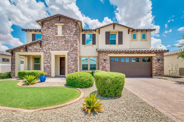 5297 S Loback Lane, Gilbert, AZ 85298 (MLS #5638324) :: The Kenny Klaus Team