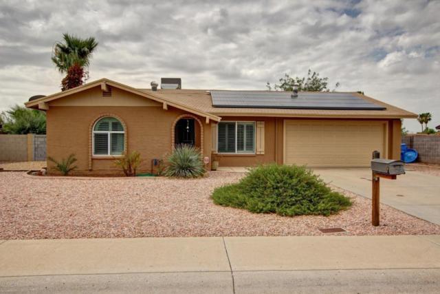 1401 W Taro Lane, Phoenix, AZ 85027 (MLS #5638346) :: RE/MAX Infinity