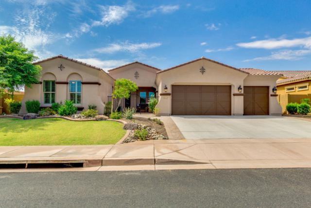 12777 W Via Caballo Blanco, Peoria, AZ 85383 (MLS #5638352) :: The Worth Group