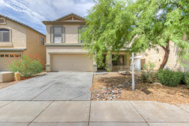 2528 W Hedgehog Place, Phoenix, AZ 85085 (MLS #5638354) :: RE/MAX Infinity