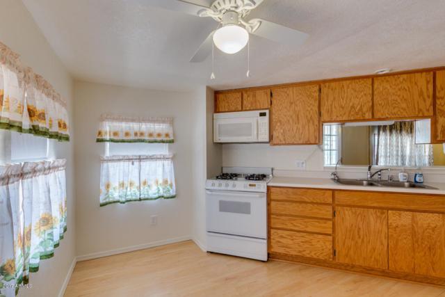 1091 S Cedar Drive, Apache Junction, AZ 85120 (MLS #5638356) :: The Kenny Klaus Team