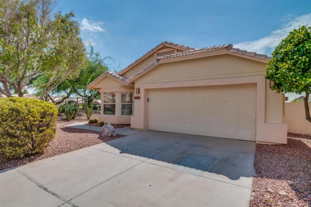 20262 N 51ST Drive, Glendale, AZ 85308 (MLS #5638365) :: Essential Properties, Inc.