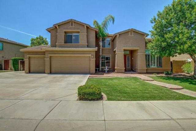 4600 S Mariposa Drive, Gilbert, AZ 85297 (MLS #5638366) :: The Kenny Klaus Team
