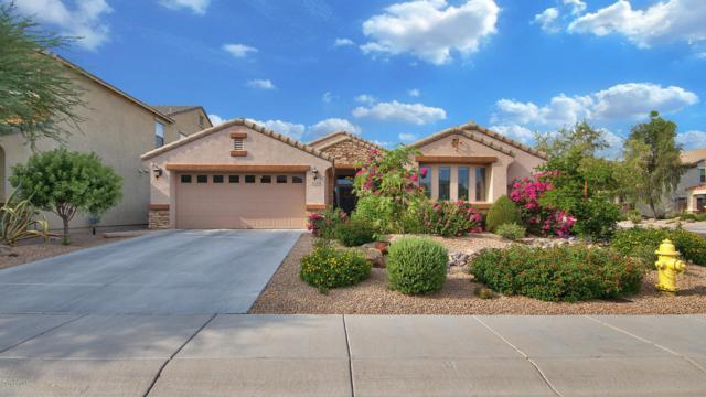 4040 E Hashknife Road, Phoenix, AZ 85050 (MLS #5638374) :: RE/MAX Infinity