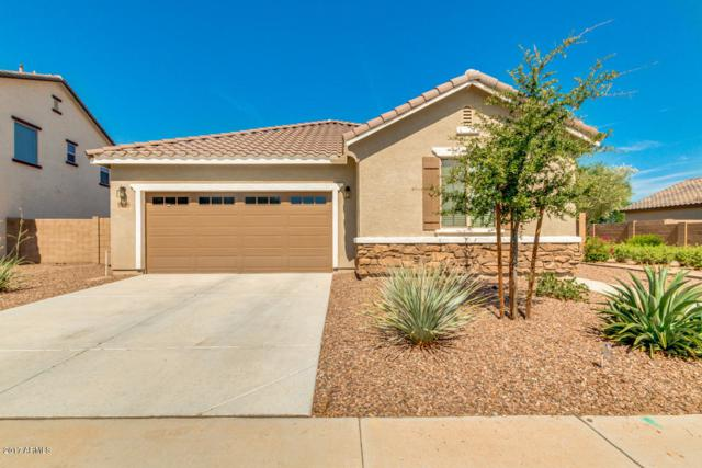 23808 S 209TH Street, Queen Creek, AZ 85142 (MLS #5638481) :: The Kenny Klaus Team