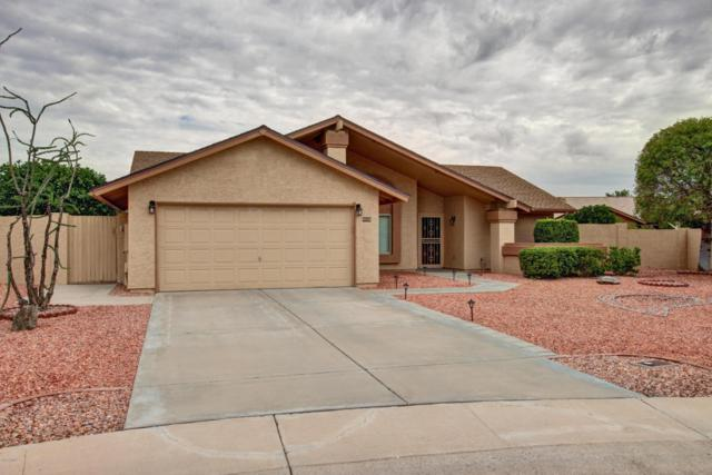 9838 W Utopia Road, Peoria, AZ 85382 (MLS #5638546) :: Desert Home Premier