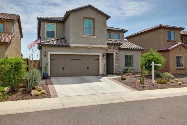 1813 W Desperado Way, Phoenix, AZ 85085 (MLS #5639086) :: The Laughton Team