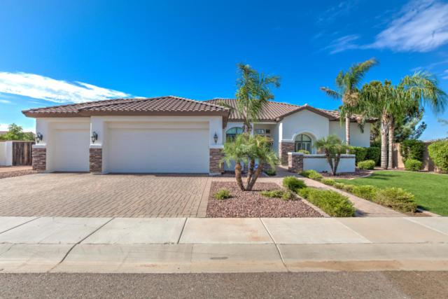 1121 E Birchwood Place, Chandler, AZ 85249 (MLS #5639420) :: Santizo Realty Group