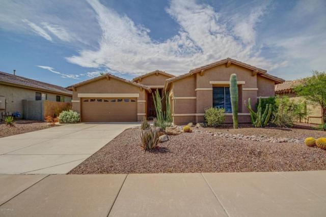 18456 W Western Star Boulevard, Goodyear, AZ 85338 (MLS #5640312) :: Essential Properties, Inc.