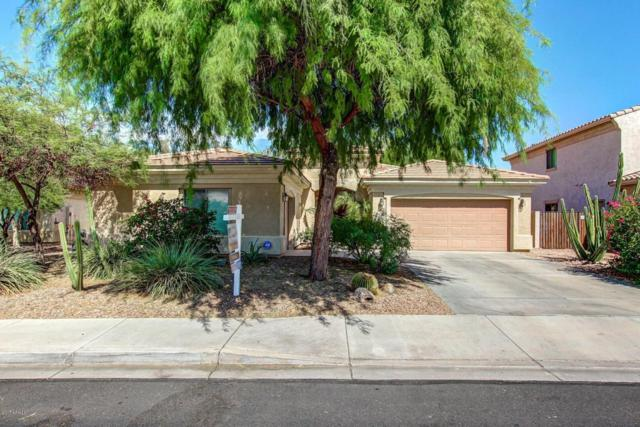 16419 N 169TH Drive, Surprise, AZ 85388 (MLS #5640592) :: The AZ Performance Realty Team