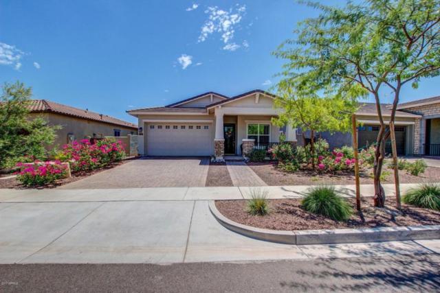 20615 W Nelson Place, Buckeye, AZ 85396 (MLS #5640673) :: Kortright Group - West USA Realty