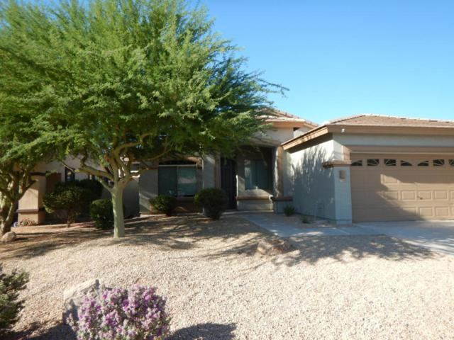 17568 W East Wind Avenue, Goodyear, AZ 85338 (MLS #5640959) :: Kortright Group - West USA Realty