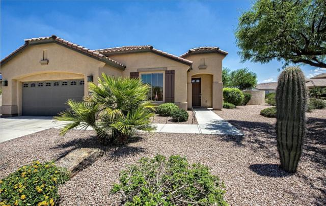 1979 N 164TH Avenue, Goodyear, AZ 85395 (MLS #5641190) :: Kortright Group - West USA Realty