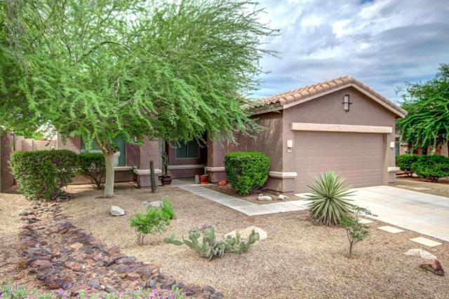 17599 W Wind Song Avenue, Goodyear, AZ 85338 (MLS #5641349) :: Kortright Group - West USA Realty