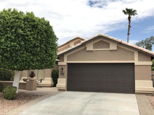 3302 N 159TH Avenue, Goodyear, AZ 85395 (MLS #5641941) :: Desert Home Premier