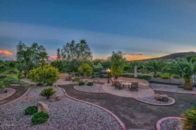 13043 W Big Oak Street, Peoria, AZ 85383 (MLS #5643097) :: Desert Home Premier
